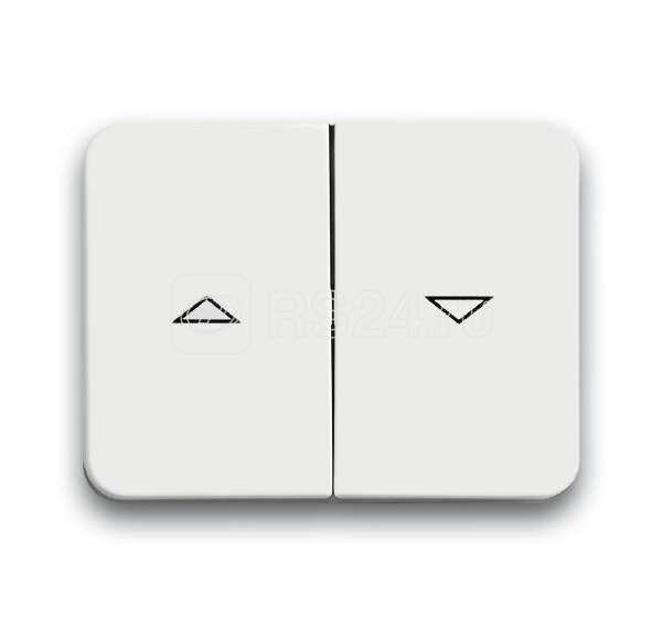 Клавиша для механизма выкл. жалюзи 2000/4 U и 2020/4 US с маркировкой alpha nea бел. мат. ABB 1751-0-1922 купить в интернет-магазине RS24