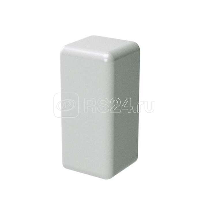 Заглушка для кабель-канала LM 30х10 ДКС 00581 купить в интернет-магазине RS24