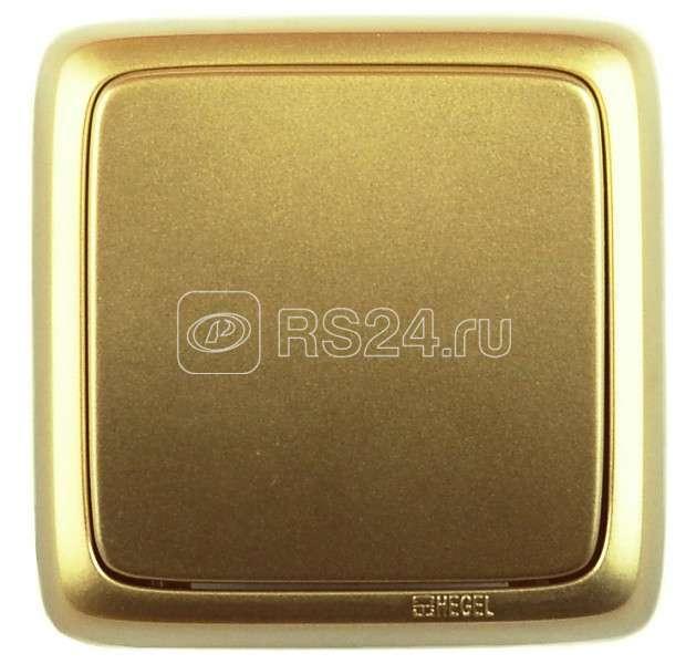Выключатель 1-кл. ОП Альфа 10А IP20 250В с монтажной пластиной зол. HEGEL ВА10-115-07 купить в интернет-магазине RS24