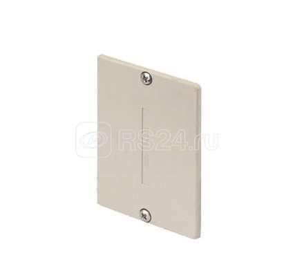 Заглушка торцевая для TK11071-8 ABS сер. Simon Connect TKA104207-24 купить в интернет-магазине RS24